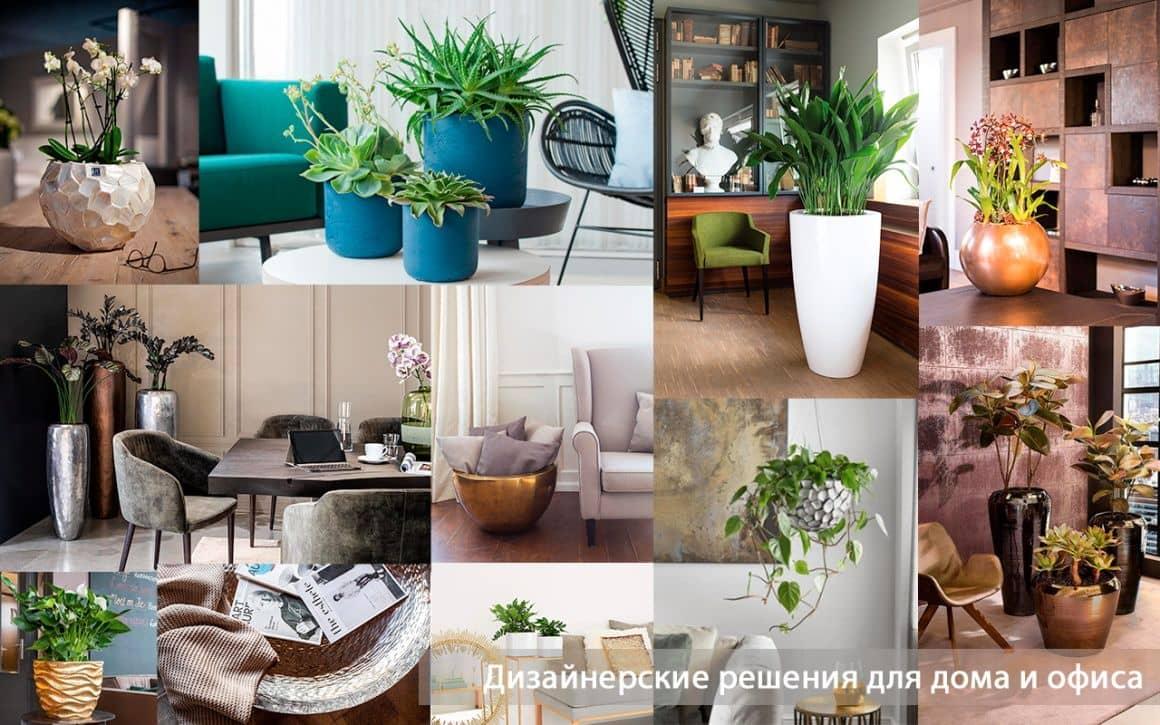 Дизайнерские кашпо для дома и офиса, купить дизайнерское кашпо в Москве, купить дизайнерское кашпо в Санкт-Петербурге
