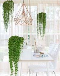 Кашпо для ампельных растений