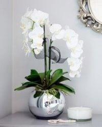 Кашпо для орхидей