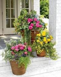 Глиняные горшки для цветов