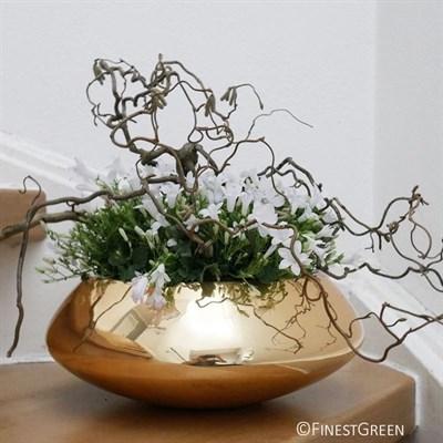 Чаша Pottery Pots Тара Мини платина - фото 11337