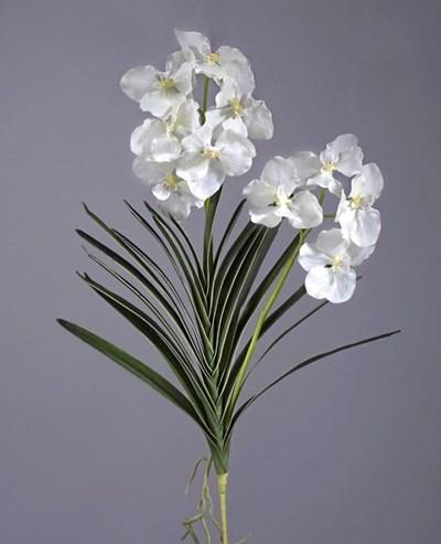 Орхидея Ванда куст белая с корнями (искусственная) Treez Collection - фото 12238