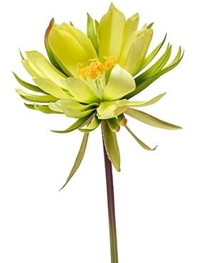 Цветок кактуса (искусственный) Nieuwkoop Europe - фото 14346