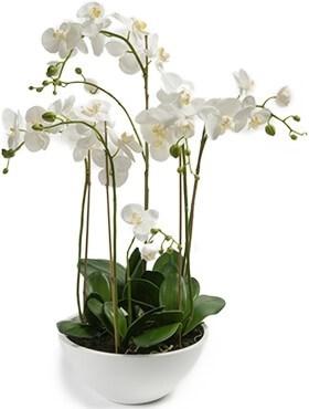 Орхидея Фаленопсис в белом горшке (искусственная) Nieuwkoop Europe - фото 14395