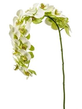 Орхидея Фаленопсис изогнутая (искусственная) Nieuwkoop Europe - фото 14399