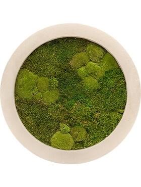 Картина из мха natural 30% ball- and 70% flat moss (искусственная) Nieuwkoop Europe - фото 14636