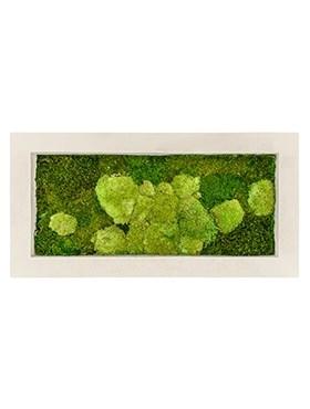 Картина из мха natural 50% ball- and 50% flat moss (искусственная) Nieuwkoop Europe - фото 14638
