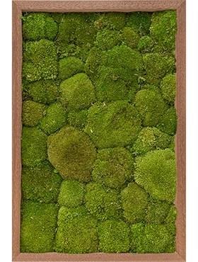 Картина из мха meranti 100% ball moss (natural) искусственная Nieuwkoop Europe - фото 14688