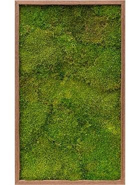 Картина из мха meranti 100% flat moss (искусственная) Nieuwkoop Europe - фото 14689