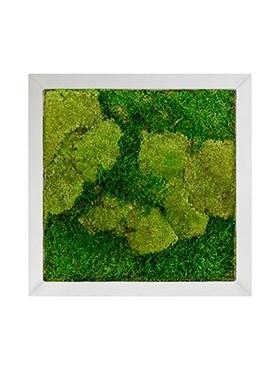 Картина из мха superline 50% ball- and 50% flat moss (искусственная) Nieuwkoop Europe - фото 14716