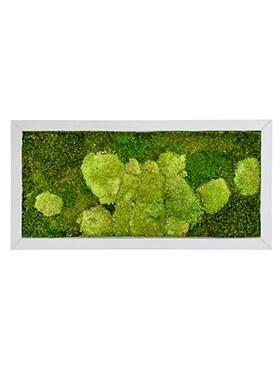 Картина из мха superline 50% ball- and 50% flat moss (искусственная) Nieuwkoop Europe - фото 14717