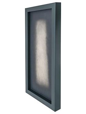Рама для фитокартины Stiel frame u-profile ral 7016 mat Nieuwkoop Europe - фото 14766