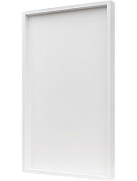 Рама для фитокартины Wood frame mdf ral 9010 satin gloss Nieuwkoop Europe - фото 14794