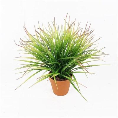 Трава латекс в горшке (искусственная) Альсид - фото 26441