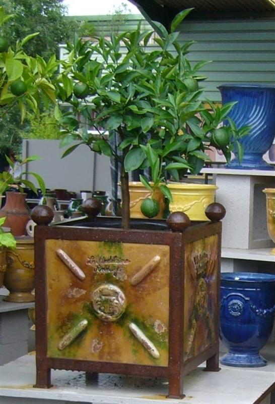 Куб де Бакс Шато уличный (Anduze) фламме