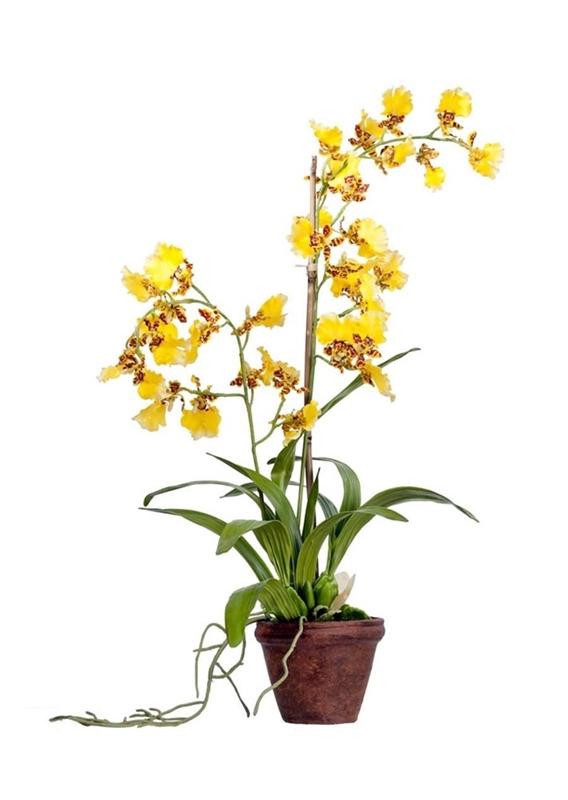 Орхидея Дансинг Канарейка в кашпо (искусственная) Treez Collection - фото 8118