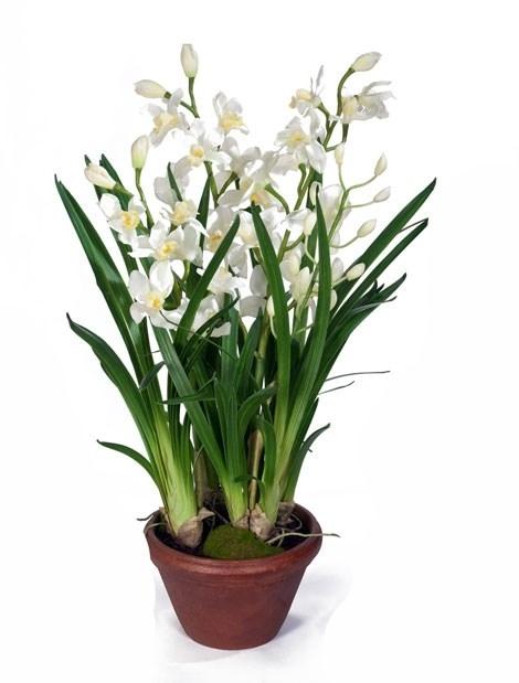 Орхидея Цимбидиум белая большая в кашпо (искусственная) Treez Collection - фото 8123