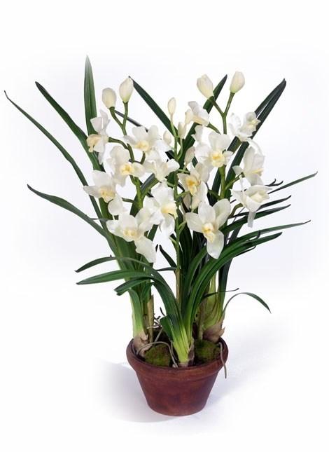 Орхидея Цимбидиум белая средняя в кашпо (искусственная) Treez Collection - фото 8126