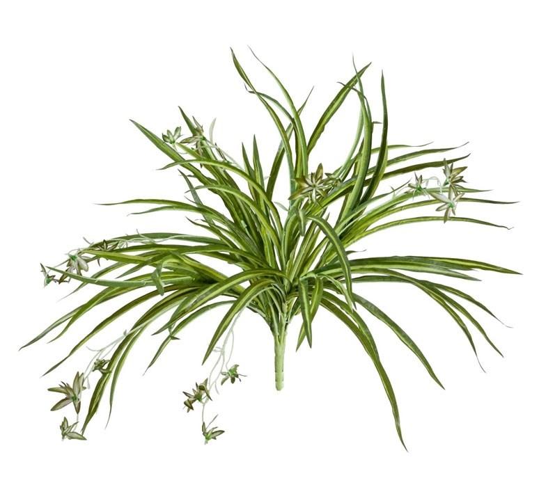 Хлорофитум бело-зелёный куст с ростками (искусственный) Treez Collection - фото 8270