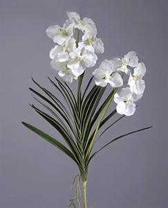 Орхидея Ванда куст белая с корнями (искусственная)