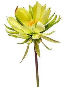 Цветок кактуса (искусственный) Nieuwkoop Europe