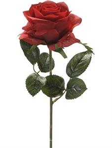 Роза Симона