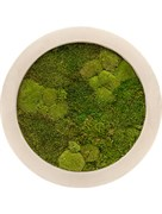 Картина из мха natural 30% ball- and 70% flat moss