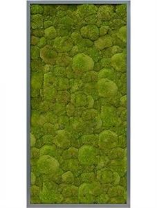 Картина из мха mdf ral 7016 satin gloss 100% ball moss (natural)
