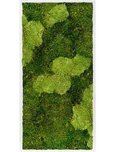 Картина из мха mdf ral 9010 satin gloss 30% ball moss (natural) and 70% flat moss