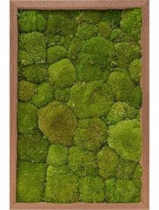 Картина из мха meranti 100% ball moss (natural)
