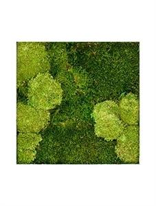 Картина из мха stiel l ral 9010 30% ball- and 70% flat moss
