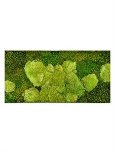 Картина из мха stiel l ral 9010 50% ball- and 50% flat moss
