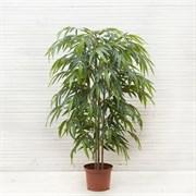 Бамбук *3 ствола Премиум латекс (искусственный) Альсид