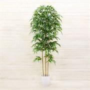 Бамбук в интерьерном кашпо латекс премиум (искусственный) Альсид