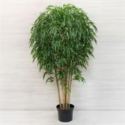 Бамбук Премиум *12стволов латекс в тех.кашпо (искусственный) Альсид
