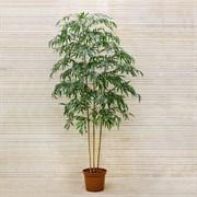 Бамбук*3 ствола латекс (искусственный) Альсид