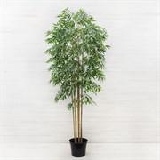Бамбук*8 стволов латекс (искусственный) Альсид