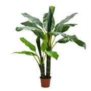 Банановая пальма латекс (искусственная) Альсид