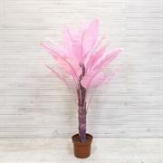 Банановая Пальма розовая латекс (искусственная) Альсид