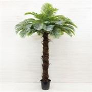 Пальма латекс (искусственная) Альсид