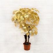120/2К/ОС/83 Дерево золотое (2кр.,ориг.,ст.) 120см