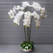 """Орхидея в декоративном кашпо """"арт-бетон"""" (искусственная) Альсид"""