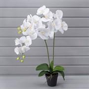 Орхидея латекс в техническом горшке (искусственная) Альсид