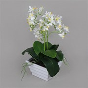Орхидея в интер.кашпо белая (искусственная) Альсид