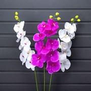 Орхидея латекс микс (искусственная) Альсид