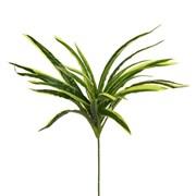 Ветка Драцены розетка (искусственная) Альсид