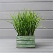 Трава зелёная латекс в деревянном ящике (искусственная) Альсид