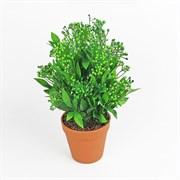 Куст с ягодный в кашпо зелёный (искусственный) Альсид