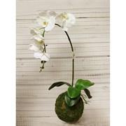 """Кокедама """"Орхидея""""  белая латекс (искусственная) Альсид"""