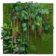 Фитостена Рельеф с тропическими растениями (искусственная) Альсид